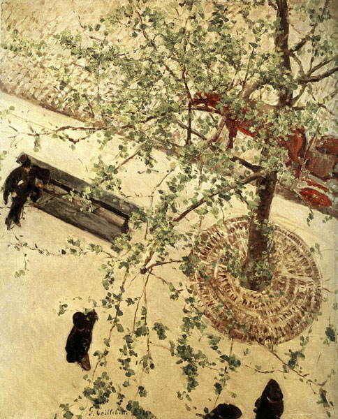 L'arbre dans la peinture de paysage entre 1850 et 1920 de Corot à Matisse : Gustave Caillebotte (1848-1894) _ Boulevard vu d'en bas, 1880, Huile sur toile, 65 x 54 cm – Collection privée