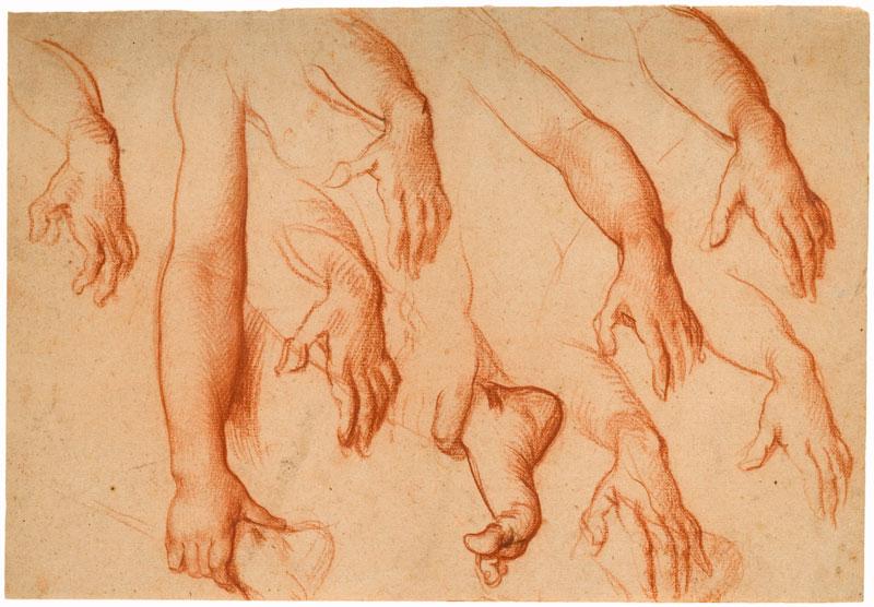 Une collection particulière : les dessins de la collection Christian et Isabelle Adrien : Etude de mains, bras, pieds - Vanni