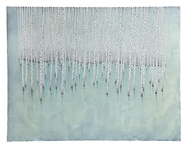 Des arbres en hiver : Wintertime © Stéphane Erouane Dumas