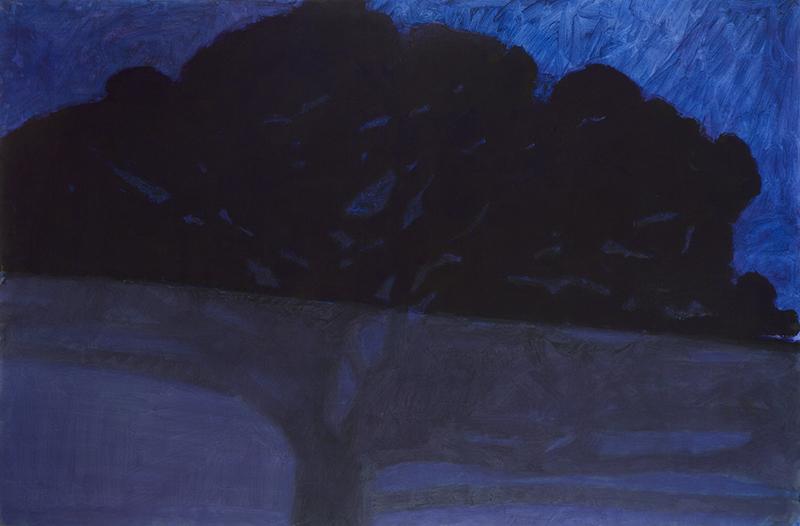 Alexandre Hollan. Je suis ce que je vois : Alexandre Hollan. Chêne bas, nuit. 2012, acrylique sur toile. © Illés Sarkantyu
