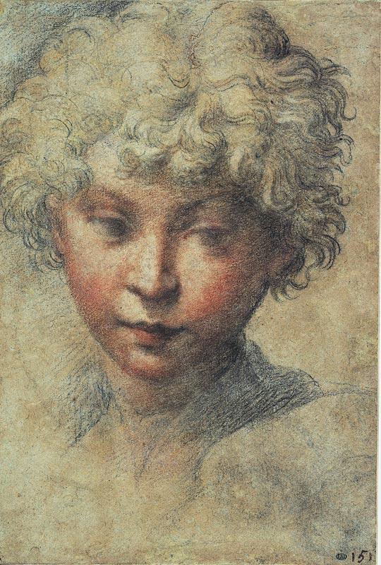 Le Parmesan, dessins et gravures en clair-obscur : Girolamo Francesco Mazzola dit le Parmesan Tête de jeune homme Pastels de couleur sur papier bleu