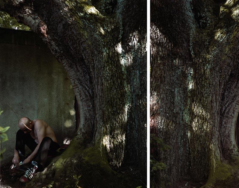 Valerie Jouve : Valérie Jouve, Sans Titre (Les arbres), 2006, C-Print, dyptique, 150 x 193 cm, Courtesy Galerie Xippas