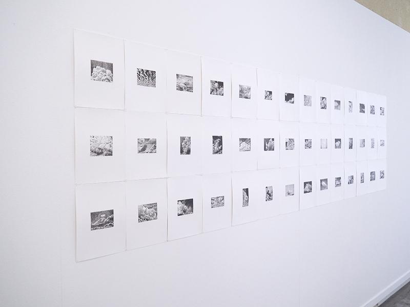 Wendy Vachal. Structures de l'instable : Grises Mines, destinations connues mais non communiquées #2. Dessin sur papier calque transféré sur papier, ensemble de 42 dessins, 28,4 x 21 cm chacun, 2020.