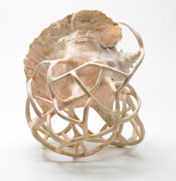 Patrick Condouret - Around up and down : Sans titre.  2011, coquillage, pâte synthétique, aquarelle, vernis, 35 cm x 40 cm.
