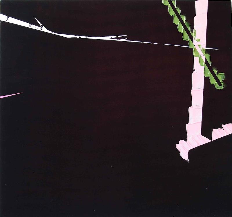 Choses incorporelles : Velours, V 1208, 2008, acrylique sur velours, 113 x 100 x 7 cm. Courtesy galerie Jean Brolly.