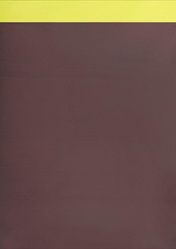 Emmanuel Van Der Meulen - Chronochromie : Emmanuel Van der Meulen, sans titre, 2009-2010, acrylique sur papier, 59 x 42 cm, courtesy galerie Jean Fournier, crédit photographique : Antoine Delage de Luget