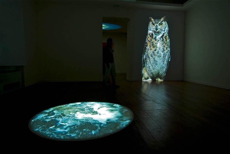 Corinne Mercadier – Black screen drawings et Longue distance : Bertrand Gadenne Le Hibou, 2005, installation, projection vidéo et La Source, 2008, installation, projection vidéo