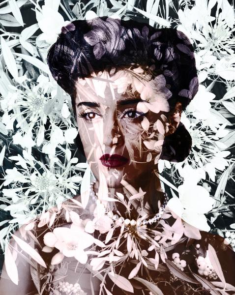 La Belle et la Bête : Valerie Belin. Cleome Spinosa (Spider Flower). 2010, impression pigmentaire sur papier marouflé sur dibond, 163x130cm. Collection Bernard Magrez