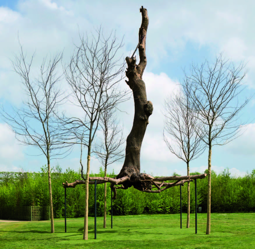 Penone Versailles : Giuseppe Penone. Elevazione / Élévation. 2011, bronze, arbres, 1000 x 600 x 600 cm. ©  Courtesy Giuseppe Penone - photo tadzio