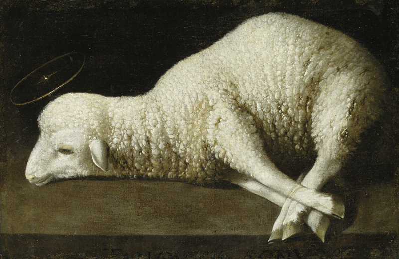 Francisco de Zurbarán : Agnus Dei. Vers 1635-1640, huile sur toile 36 x 52 cm. The San Diego Museum of Art.