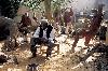 Ousmane Sow. Trois Bronzes : Ousmane Sow. Ousmane Sow dans son atelier de Dakar, au milieu de la bataille de Little Big Horn, 1988, photographie de Béatrice Soulé