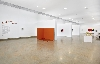 Imi Knoebel – Fernand Léger. Une rencontre : KNOEBEL Musee Fernand Leger 06 BIOT photo Francois Fernandez 2016