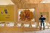Biennale de Melle 2015. Jardiniers terrestres, Jardiniers célestes : Vue de l'exposition de Gilles Clément, Biennale de Melle, 2015.