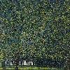 Jardins : Gustav Klimt Le Parc 1910 ou avant Huile sur toile. H. 110,4 ; L. 110,4 cm New York, The Museum of Modern Art Gertrud A. Mellon Fund, 1957