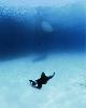 Philippe Ramette. Eloge à la déambulation : Exploration rationnelle des fonds sous-marins : la sieste, 2006. Photographie couleur, 150x120cm, © Marc Domage  © Philippe Ramette / ADAGP, Paris, 2017. Courtesy de l'artiste & galerie Xippas