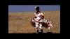 Elle était une fois : Tracey Emin, Sometimes the dress is worth more money than the money, 2000-2001. Durée 4 min, DVD-R, pal, couleur, sonore. Courtesy de l'artiste. Collection les Abattoirs / Frac Midi-Pyrénées.