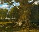 Gustave Courbet, l'amour de la nature