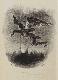 L'estampe visionnaire, de Goya à Redon