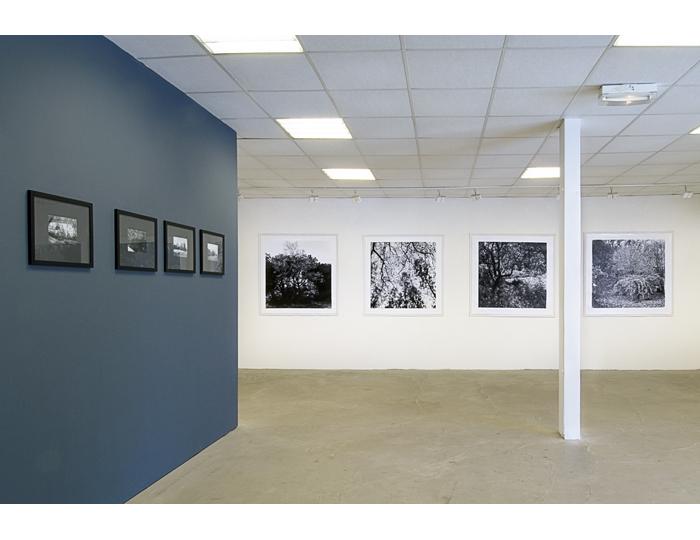 Galerie agART